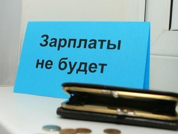 Почти целый год в Ростовской области 197 сотрудников компании работали за «спасибо»