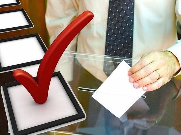 Сегодня в Ростове проходят выборы депутатов Законодательного собрания
