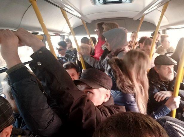 «Горячую линию» для недовольных транспортом пассажиров открыли в Ростове