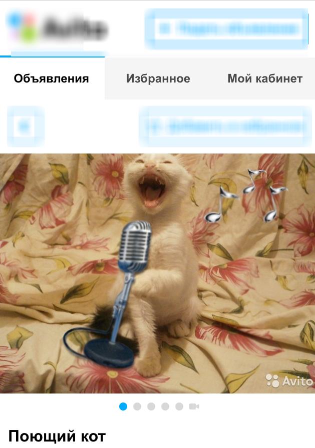 На  сайте бесплатных объявлений Ростова появился лот в виде поющего кота