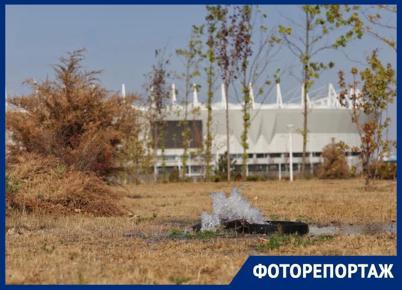 Сгоревшие под ростовским солнцем миллионы к Чемпионату Мира