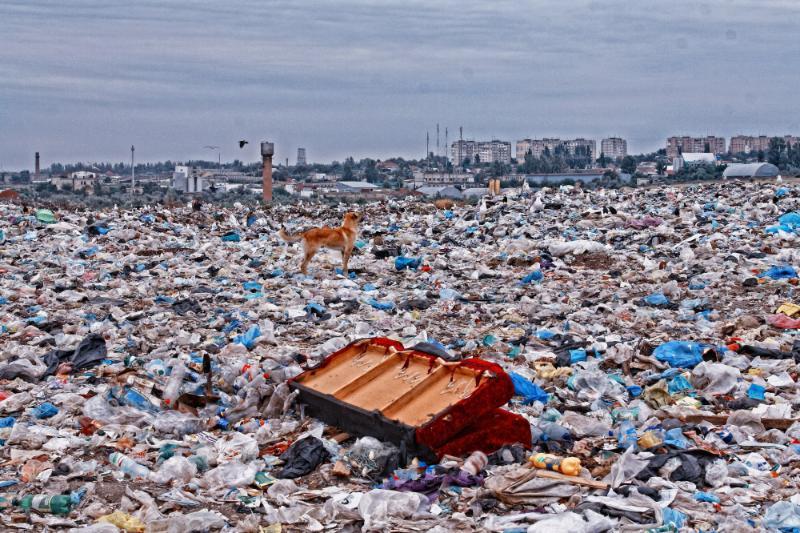 Суд запретил мусорный полигон на участке в Ростовской области