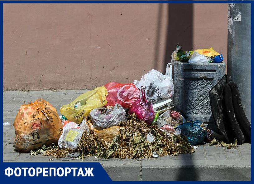 Битые бутылки, горы окурков исобачьи какашки: центр Ростова без прикрас