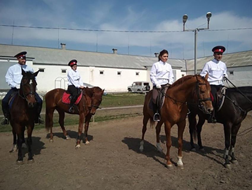 Охранять выйдут 30 конников изказачьих дружин— Ростов-на-Дону
