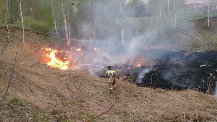 Пожар уничтожил часть Кумженской рощи вРостове-на-Дону
