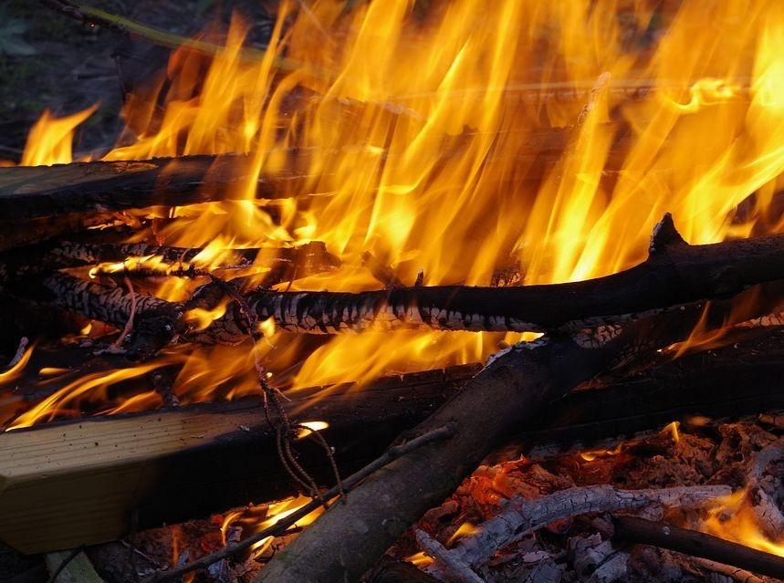 В Ростовской области тушат большой пожар под Старочеркасском