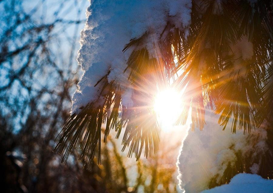 Погода в Ростове-на-Дону: нас ждет небольшое потепление