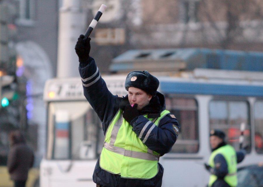 В Ростове сотрудник ГИБДД остановил движение ради бездомной собаки