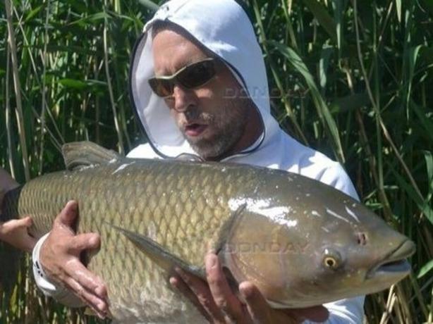 Огромного 23-килограммового амура поймал рыбак из Ростовской области