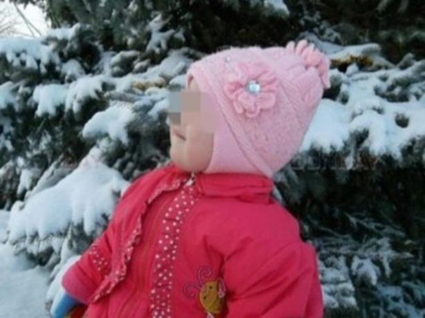 Стали известны новые подробности падения из окна 5-летней малышки в Ростовской области
