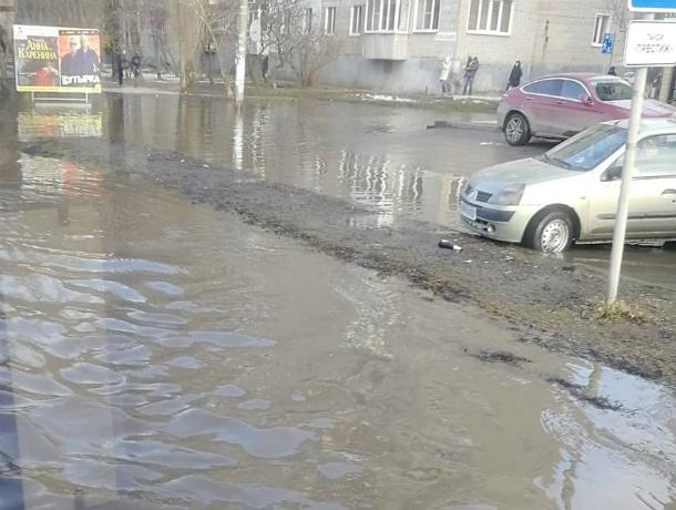 Перебираться вплавь по зловонным грязным рекам пришлось пешеходам в Ростовской области