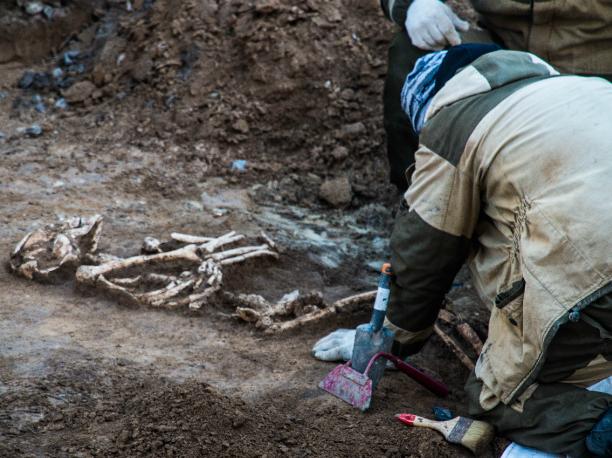 Удивительно древний и пугающий скелет человека откопали археологи в Ростове