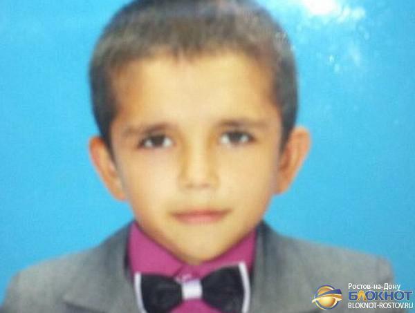Пропавший в Ростовской области 8-летний мальчик найден