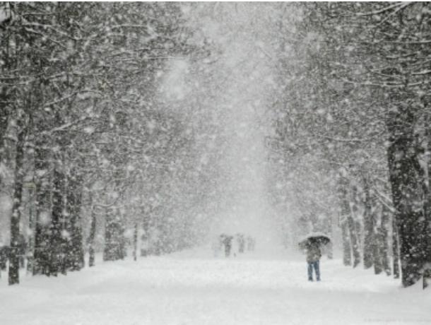Снегопад в Ростовской области станет опасным явлением, - МЧС
