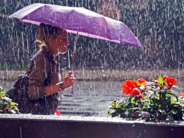 Дождливый и пасмурный вторник обещают синоптики жителям Ростова