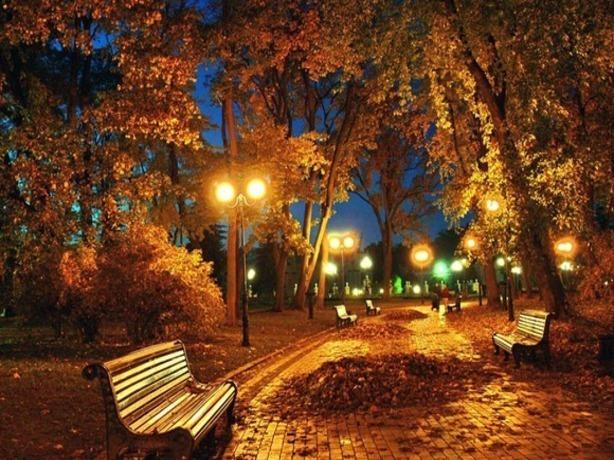 Создать красивую аллею с фонарями и лавочками на улице Зорге просит любительница прекрасного из Ростова