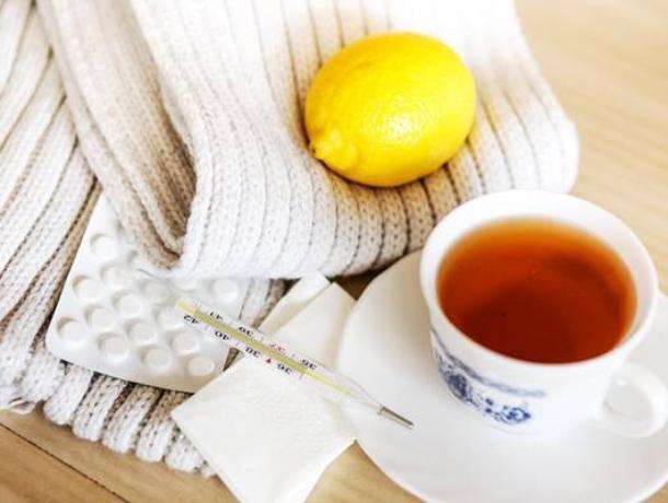 Надвигающуюся эпидемию гриппа попытаются предотвратить советами специалистов «горячей линии» в Ростове