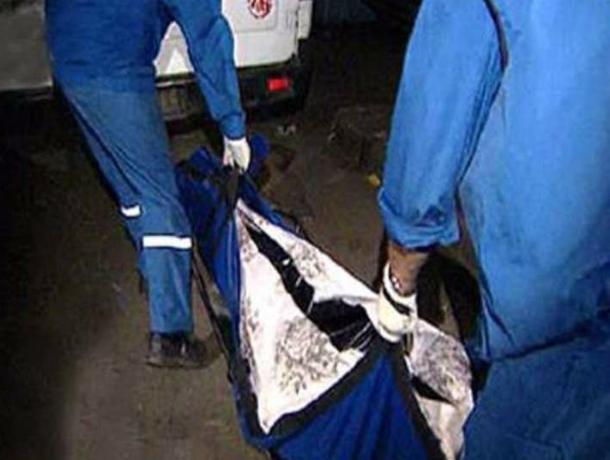 Женщина мучительно погибла под колесами ЗИЛа на вечерней трассе под Ростовом