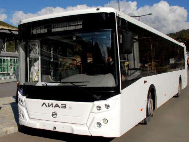 Удмуртское ПАТП «отвоевало» у ростовских перевозчиков 11 популярных автобусных маршрутов