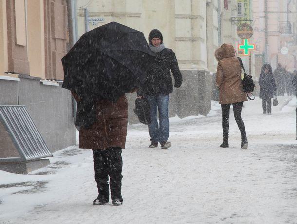 Снег с дождем выпадет во вторник в Ростове