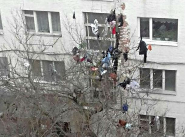 «Модный приговор» изменнику на дереве под окнами высотного дома рассмешил жителей Ростова